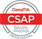 Cyber Security Analytics Professional